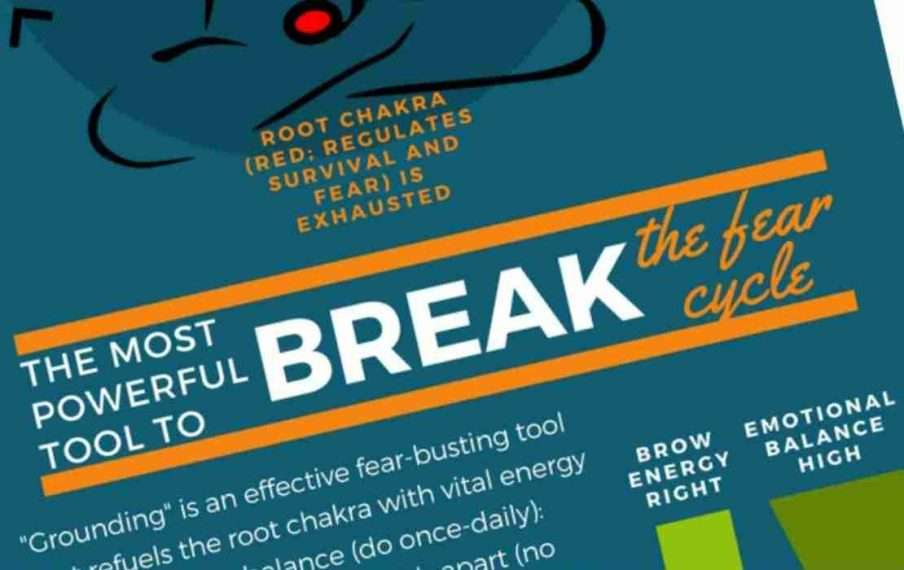 [Infographic] How to break the cycle of fear